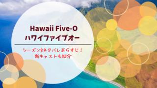 ハワイファイブオー シーズン8 あらすじネタバレ