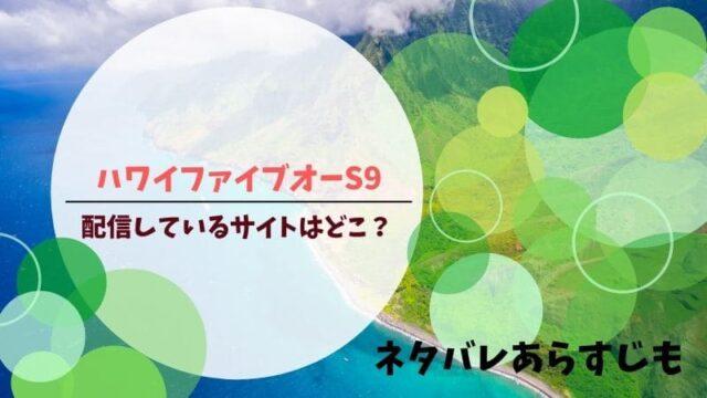 ハワイファイブオー シーズン9 配信