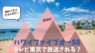 ハワイファイブオー シーズン8 テレビ 東京